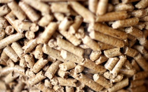 Los pellets son el combustible de las calderas de biomasa